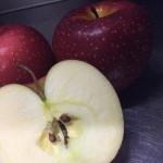 青森のリンゴの話